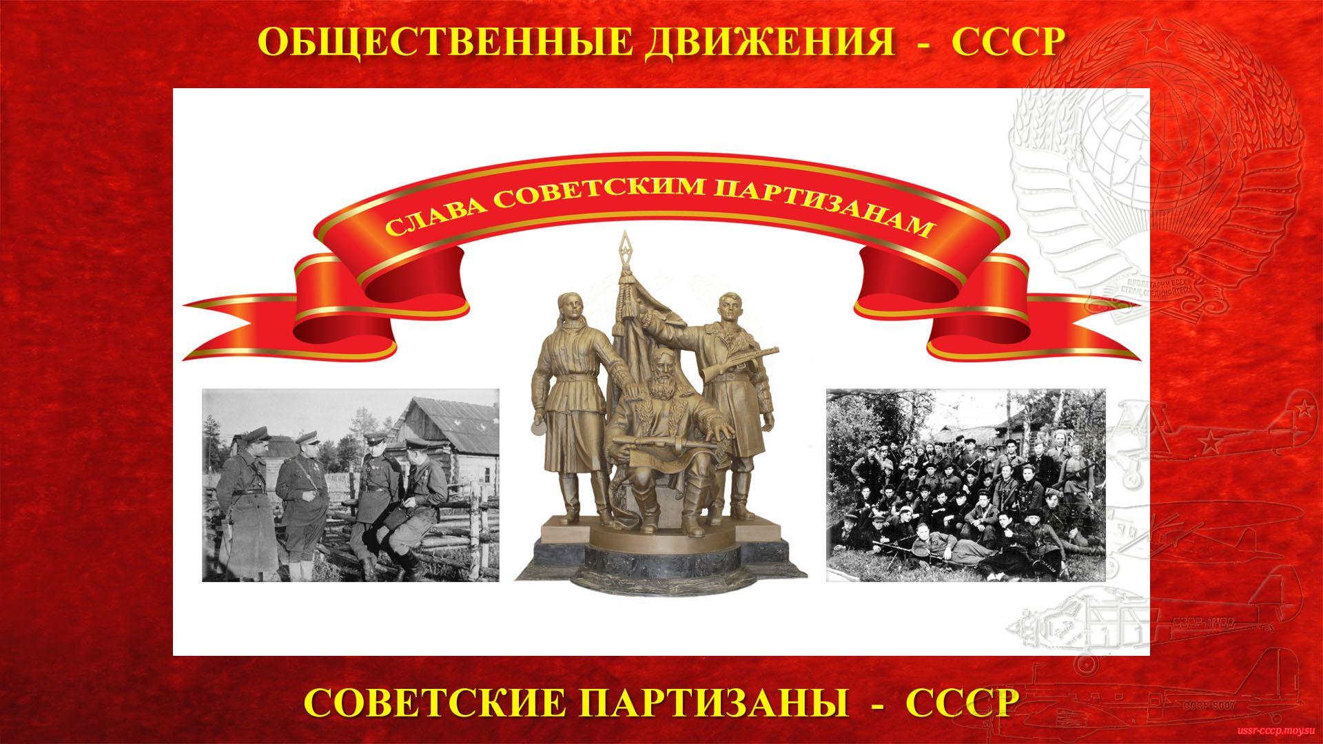 Советские партизаны(Советское движение Сопротивления)